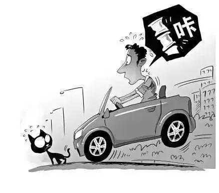 这些生活中的汽车保养小技巧,非常实用!