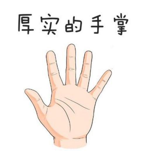 右手 手相