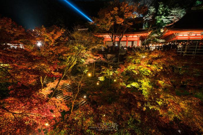 日本|红叶狩艳遇京都