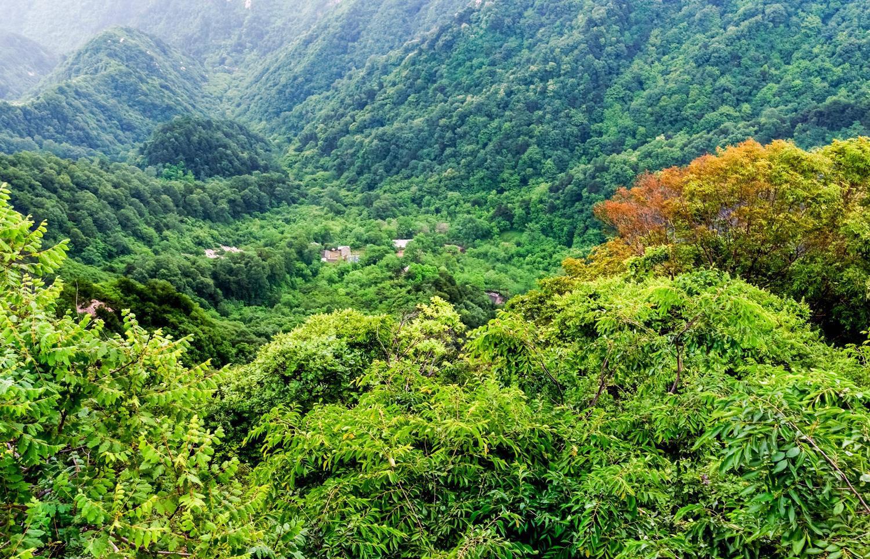 秦岭山脉中的五台山.图片