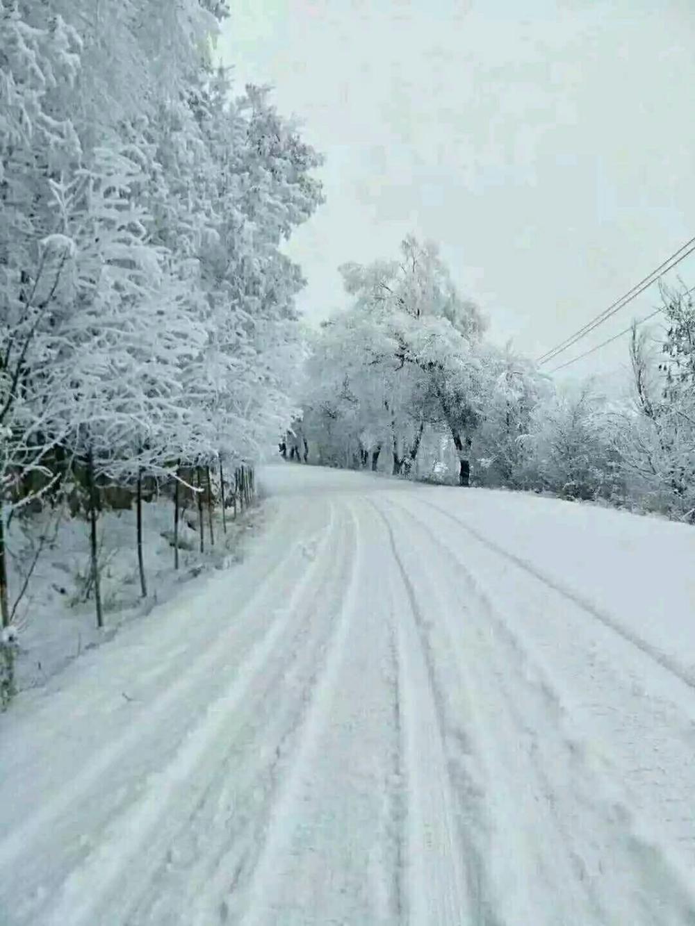 西安临潼大雪纷飞的风景, 景色像仙境一样美, 你去旅游欣赏过吗?
