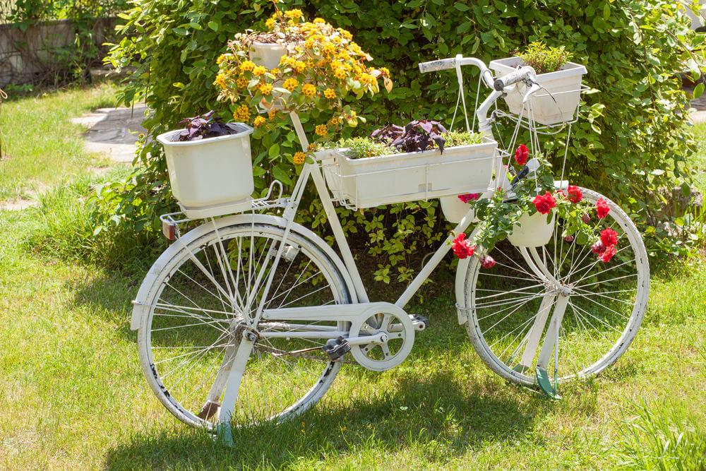 自行车 1000_667图片