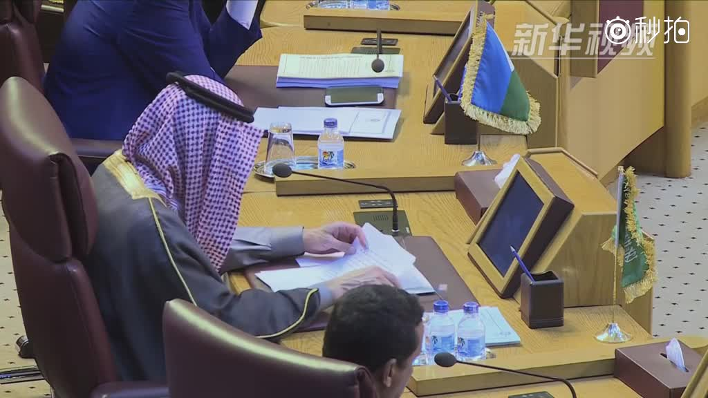 阿盟发表声明谴责美国