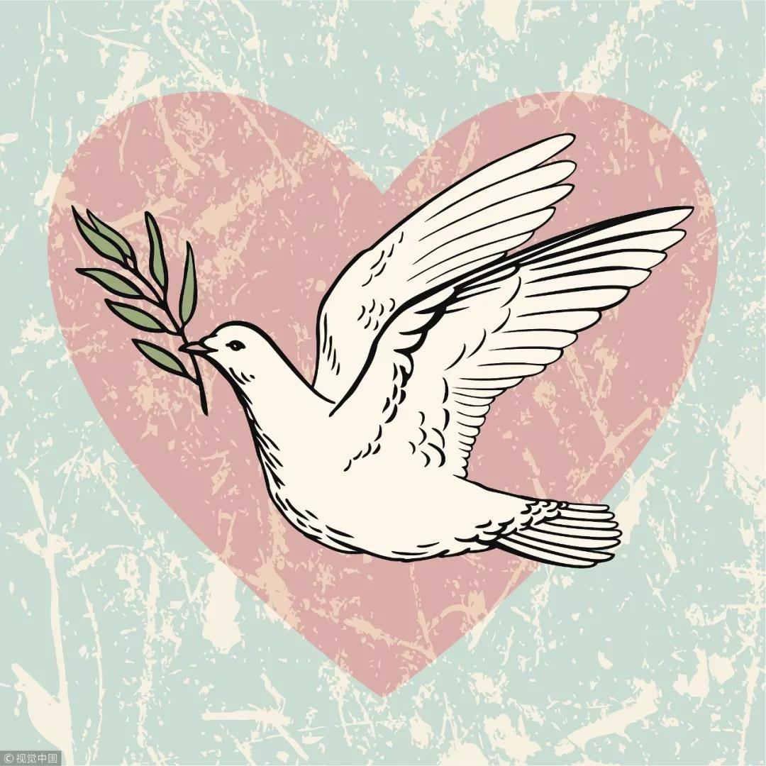 推荐关键词:   鸟类,和平鸽,鸽子,翅膀,橄榄枝,和平,希望,心形,爱,纹理.