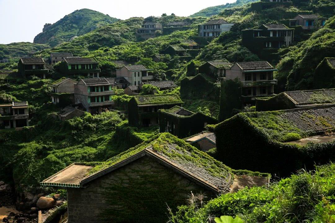 抛弃的房子爬满了绿色植物,曲径通幽.