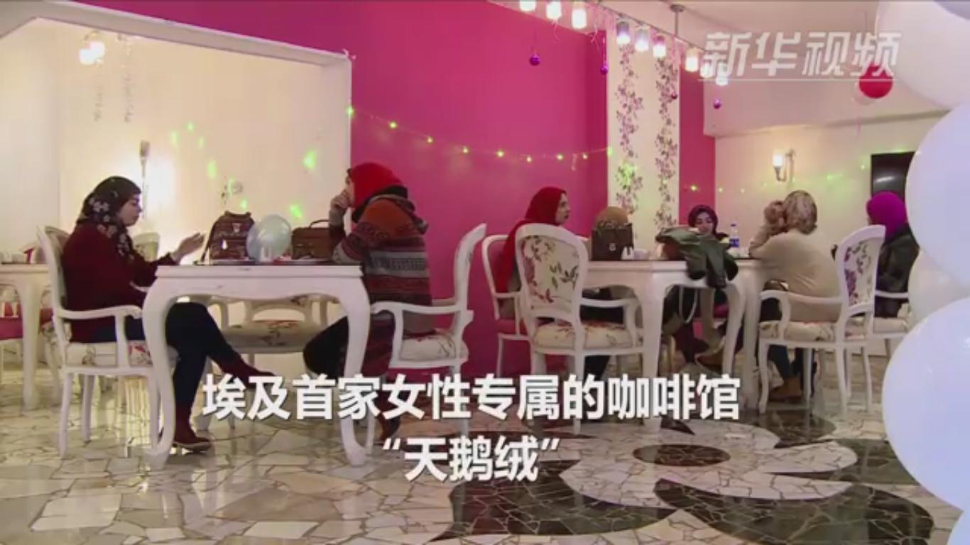 探秘埃及首家女性专属咖啡馆