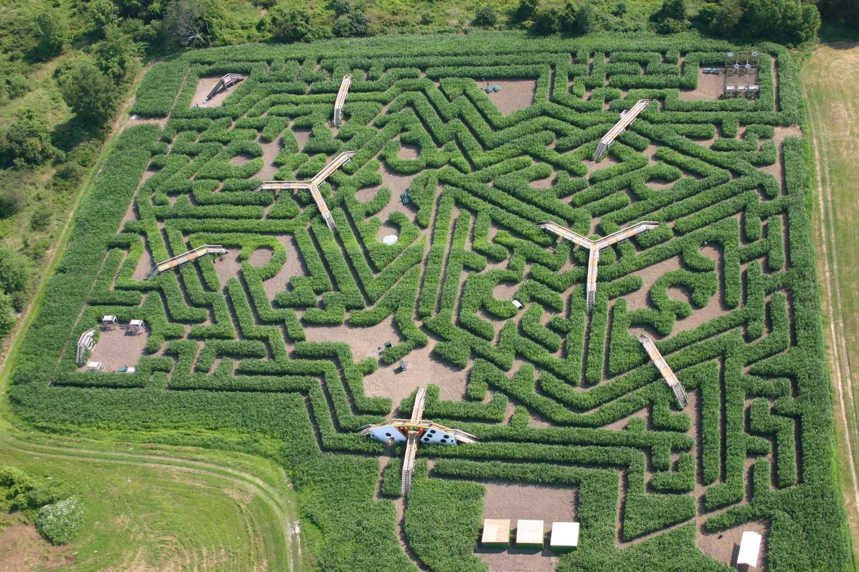 神秘而古老 这些迷宫至今无人轻易破解 堪比八卦阵的迷宫 图解迷宫的图片