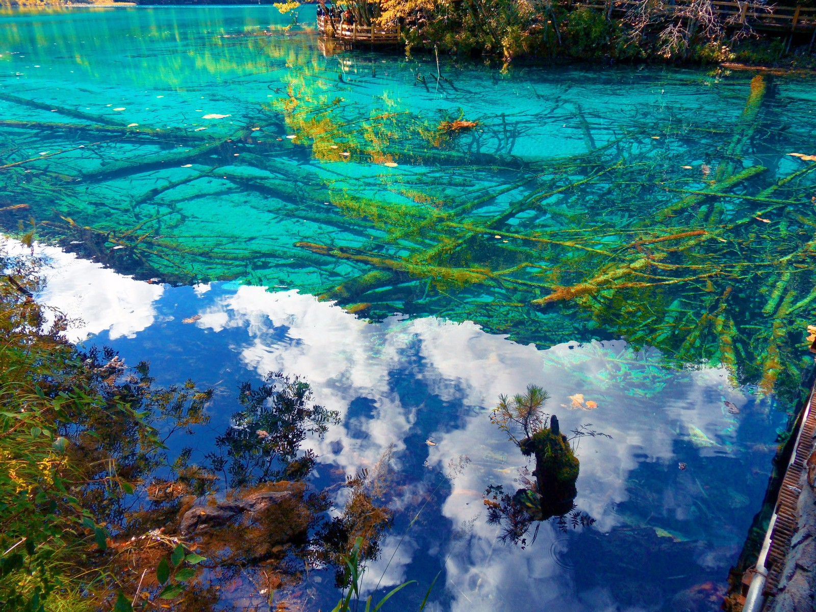 九寨风景美如画,水中的倒影如醉如痴(三)