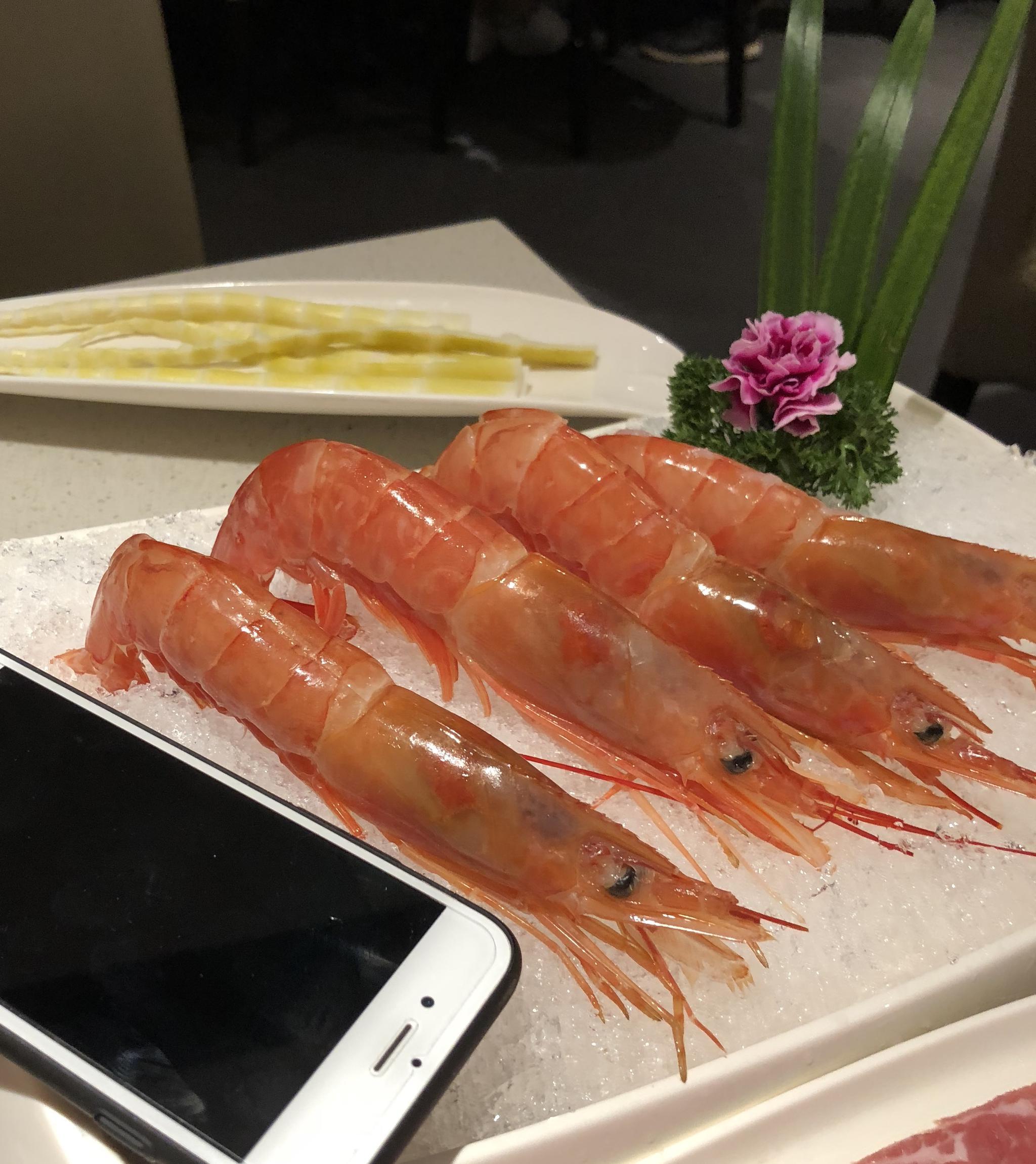 v吃法一下吃法捞网红海底,蟹蟹送的阿根廷红虾福特蒙迪欧致胜08款说明书图片