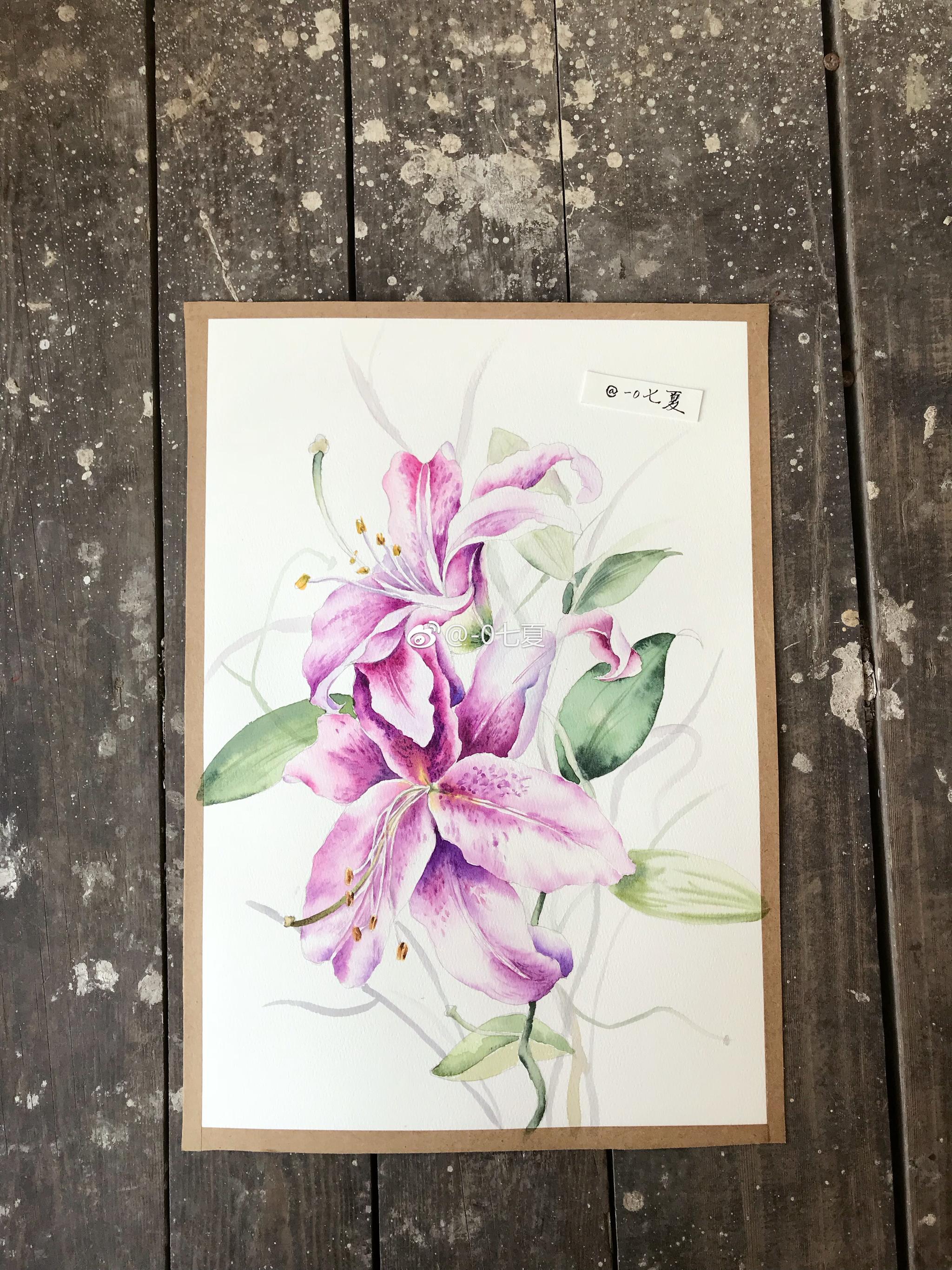 发几个前段时间的花卉作品,向日葵,月季,玉兰花,鸢尾花,百合花图片