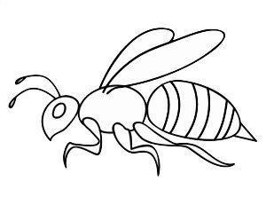 小蜜蜂嗡嗡飞,飞来飞去找妈妈,找来妈妈一起去采蜜.图片