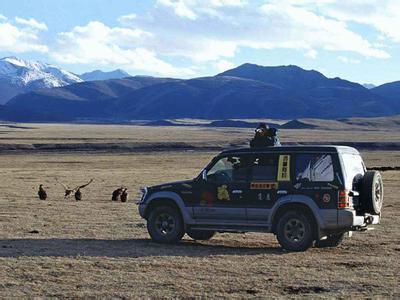 自驾开车去西藏或新疆对车的损害有多大?