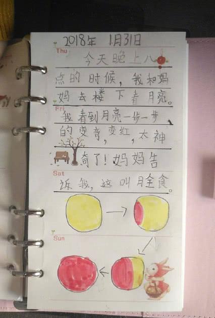 一年级小学生手绘寒假作业,生动又有才,网友纷纷围观点赞