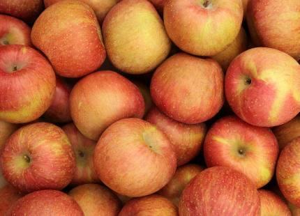 这四种水果冬季应该多吃,苹果也上榜,第三种称干果之王?
