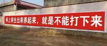 """农村""""全面二胎""""的宣传标语,太搞笑!"""
