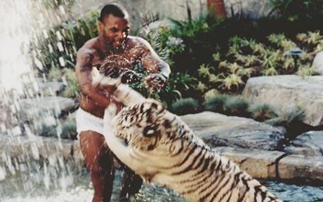 凯奇15万美元加盟爱宠丸子,泰森养了三只虎,他把章鱼当小吃宠买下儿子小猩猩章鱼车图片