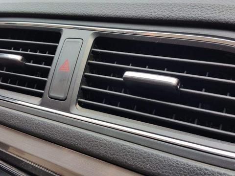 车内有异味?小心车内的霉菌气味这些致命危险在搞鬼
