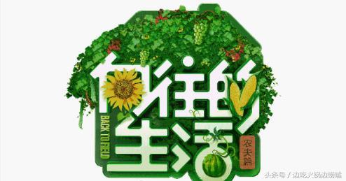 湖南卫视新节目编排确定,第二季度主题向美好