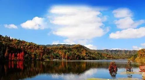玉带河环抱的县城 石柱黄水森林公园 万寿山有男石柱,女石柱两道风景