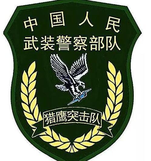 列举中国特种部队的臂章标识,看看你能认出几个来图片
