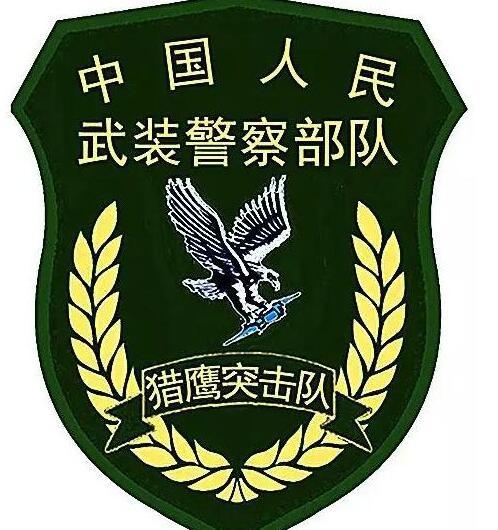 列举中国特种部队的臂章标识,看看你能认出几个来
