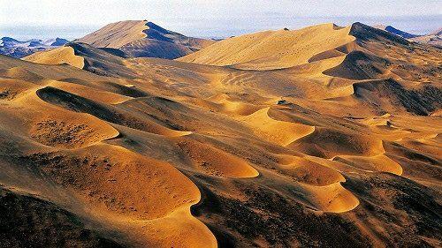 这个西北沙漠因蚂蚁森林而被大家所熟知图片