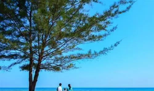 去沙巴如何选岛?5座岛屿完整点评纠结症不用再纠结了!