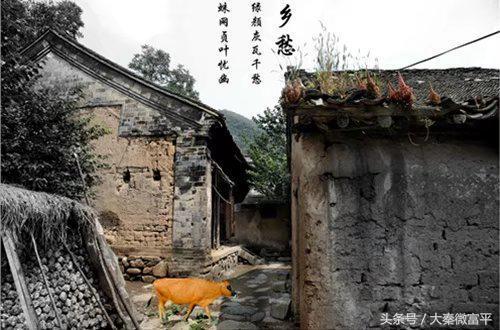 富平薛镇有个石家体育,在这里上过学的小伙伴视频小学小学v体育图片