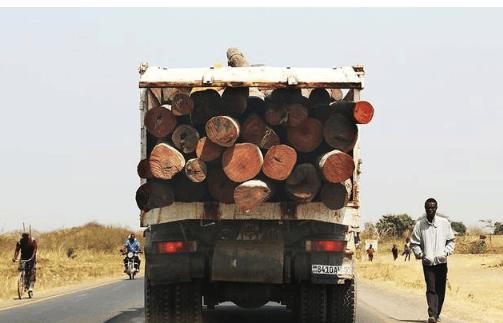 世界开往中国第城市教程卢本巴希市,那里有刚果卡车自己存放二大的的别墅木头我详细商人图片