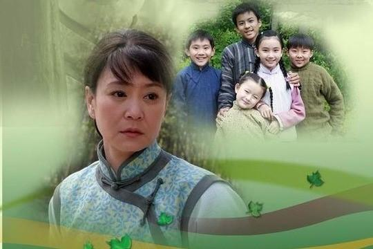 农村催泪电视剧从头哭到尾_经典老电视剧100部