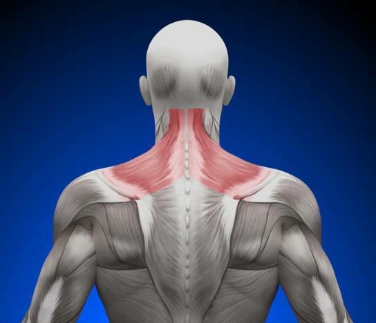 久坐电脑旁或低头玩手机时感觉颈椎僵硬酸疼?