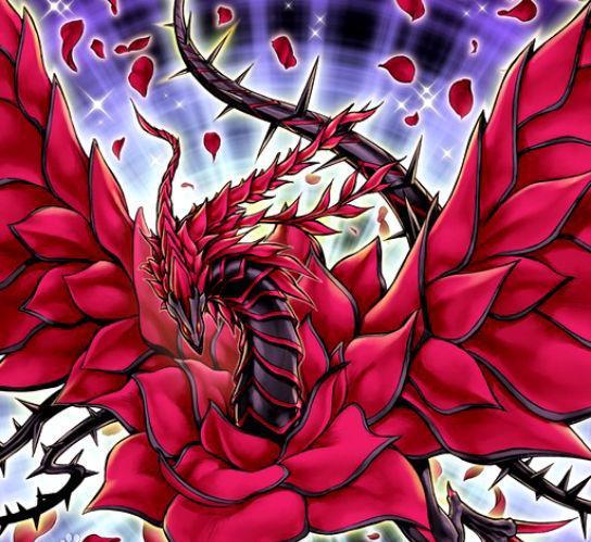《游戏王5ds》龙痣者之龙,动画「红龙」六大部分!