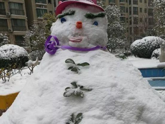 别再清理积雪了! 一位老郑州给市长写了封信, 看完网友都这么说