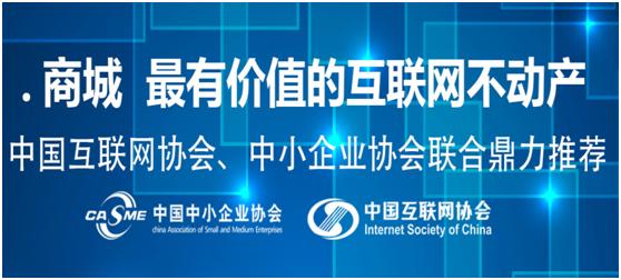 中文.商城域名中科院巡展大会将在京召开,将探讨互联网+应用