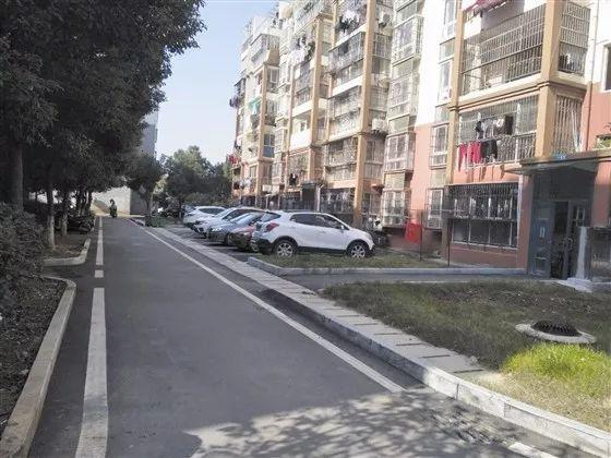 改造后清心佳园小区内的生态停车位规范整齐,全用透水砖铺就.图片