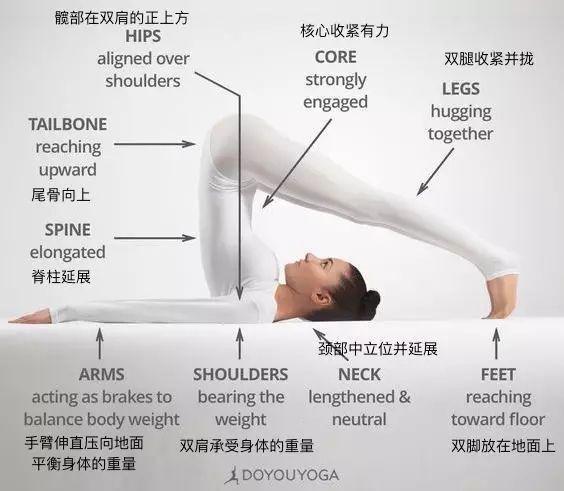 28个常见的初中级瑜伽体式的细节图图片