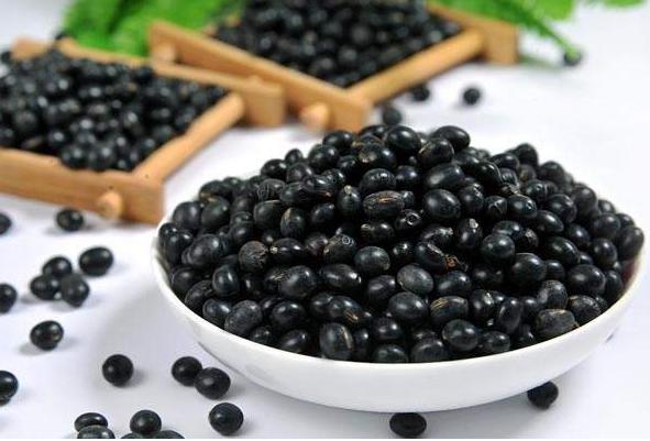 成人吃什么补钙最快最好?10大补钙食物排行榜
