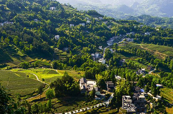 实施乡村振兴战略,以生态宜居为关键,着力打造人与自然和谐