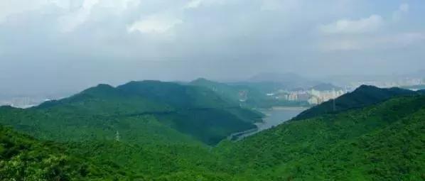 三洲田森林公园图片