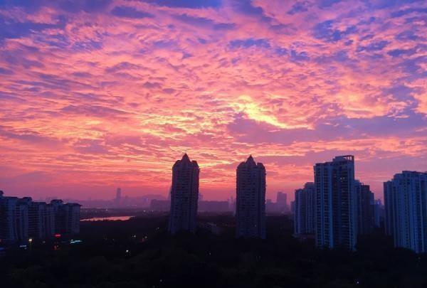 今起,深圳气温回升,最高25℃!好消息是新一股冷空气图片