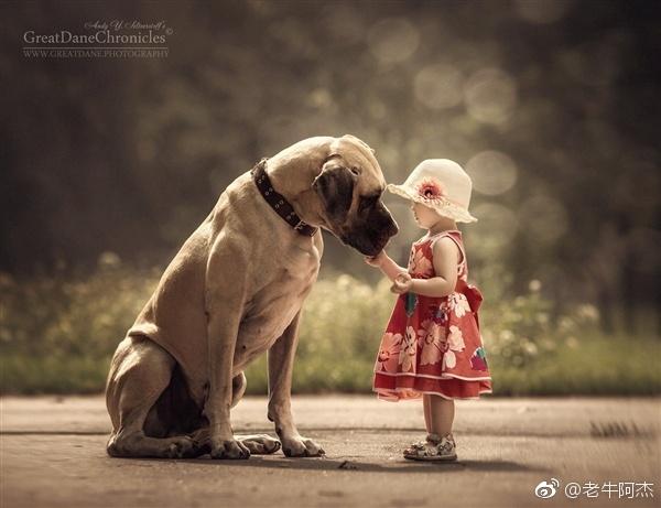 俄罗斯摄影师andy seliverstoff的动物摄影作品《小孩