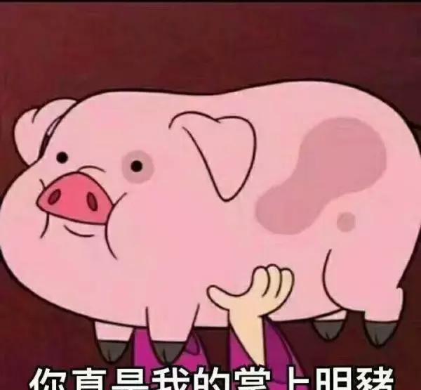 猪表情包_猪表情包图片图片