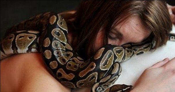 蟒蛇不吃东西,兽医建议女子远离蟒蛇女子不听,悲剧发生!