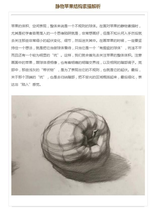 第一六〇集 李汉清老师实用素描基础:静物单体单体结构——苹果