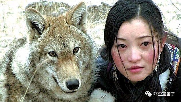 纪录片《重返狼群》,《重返狼群2》小说: 美丽亦残酷的格林童话图片