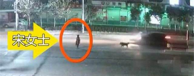女子突遭藏獒袭击 公交司机停车施救