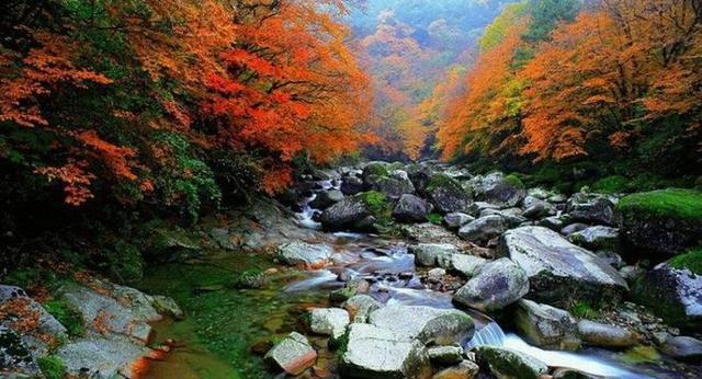 米仓山大峡谷风景名胜区位于四川省广元市,总面积约为265平方公里,是