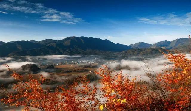 通江,神奇北纬32°线上的度假福地!图片