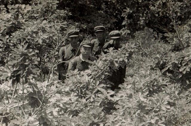 那些年,苏军在边防线上拍摄到的解放军边防战士,珍贵