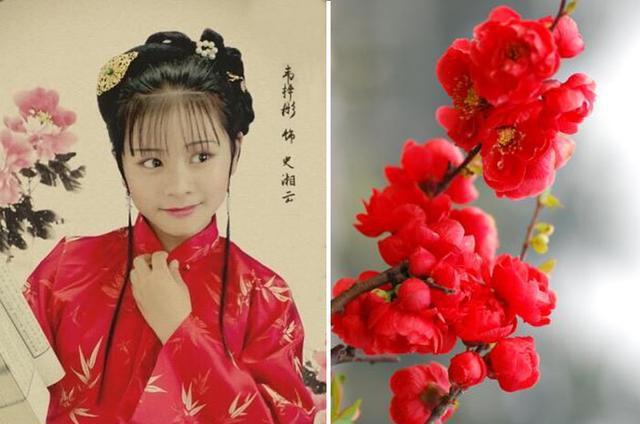 小戏骨《红楼梦之刘姥姥进大观园》中女子们的花之意向图片